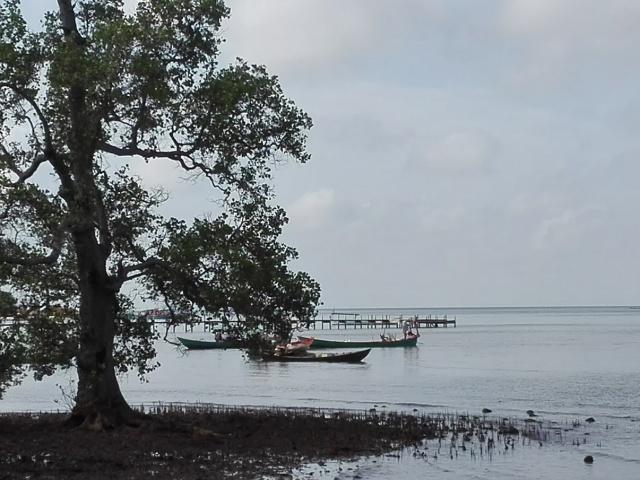 Fiskerbåde v Kep marts 2018